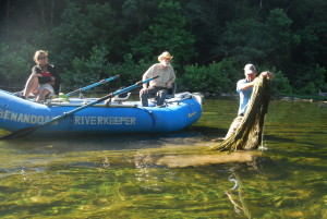 Shenandoah River Algae Bloom